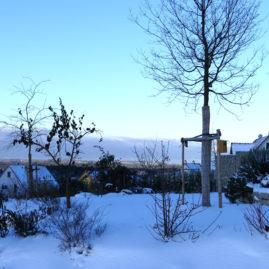 Endlich Schnee - Winteraspekt? 3