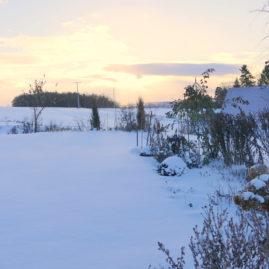 Endlich Schnee - Winteraspekt? 8