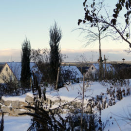 Endlich Schnee - Winteraspekt? 10