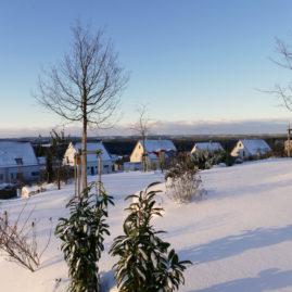 Endlich Schnee - Winteraspekt? 11