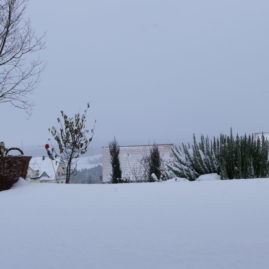 Endlich Schnee - Winteraspekt? 13